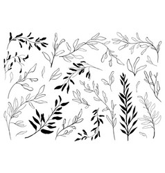 vintage set of hand drawn tree branches with vector image
