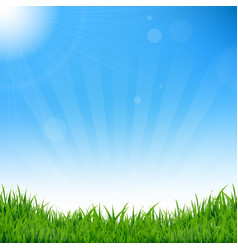 blue sky and grass background vector image vector image