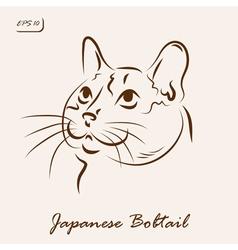 Japanese bobtail vector