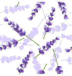 lavender flowers seamless pattern vector image vector image