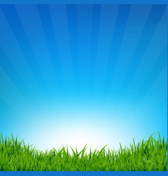 blue sky and grass sunburst background vector image vector image