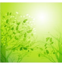Season tree with green leaves vector image