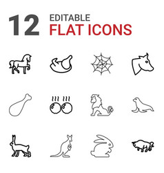 12 animal icons vector