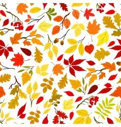 Autumn leaves and berries seamless background vector image