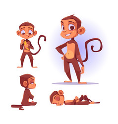 Cute monkey character in different poses vector