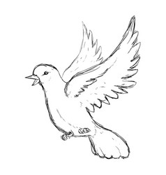 Dove bird symbol vector