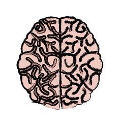 Human brain idea creativity thinking memory image vector