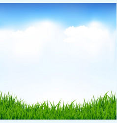 blue sky and greeen grass vector image