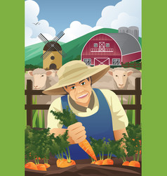 farmer harvesting carrots vector image