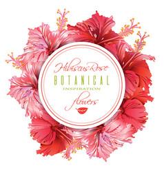 Hibiscus round banner vector