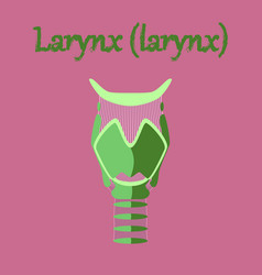 Human organ icon in flat style larynx vector