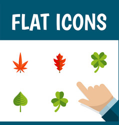 Flat icon leaves set of aspen leaf leafage and vector