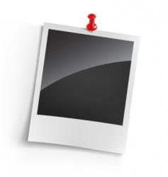 instant photo vector image vector image