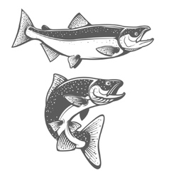 Salmon silhouettes Fresh seafood Salmon fishing vector image