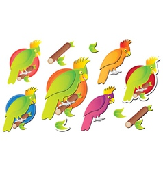 parot cartoon vector image vector image