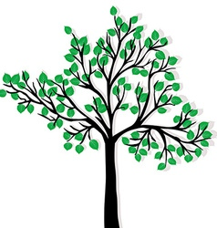 Green tree isolated over white background vector image vector image