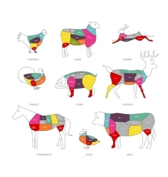 Butcher shop concept Meat vector image