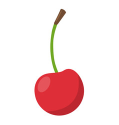 cherry icon flat style vector image