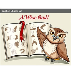 English idiom with a wise owl vector