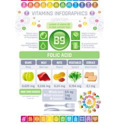 Folic acid vitamin b9 rich food icons healthy vector