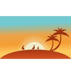 Landscape bird and palm of silhouettes vector image