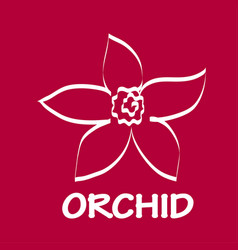 Logo orchid design vector