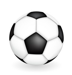 Naturalistic 3d kind of soccer ball vector