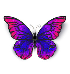 Tricolored butterfly vector