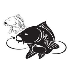 carp fish vector image