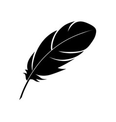 Feather 2 vector