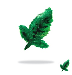 Oil painted green leaf vector