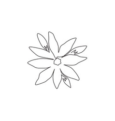 one single line drawing beauty fresh orchid vector image