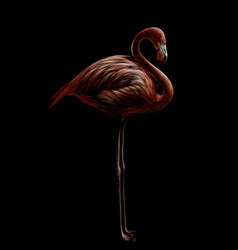 pink flamingo hand-drawn artistic flowered imag vector image