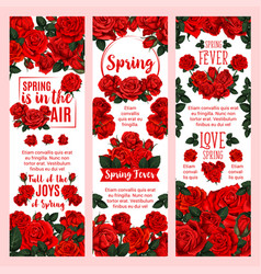 Spring season floral banner with red rose flower vector