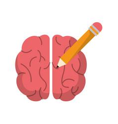 brain pencil creativity school vector image