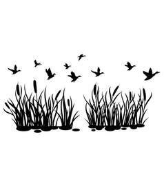 a flock wild ducks flying over a pond with vector image