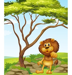 A lion at the hills vector image