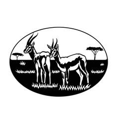 Antelope africa savanna - wildlife wildlife vector