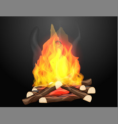 Campfire with hot flames on black background vector