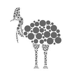 cassowary isolated on white background vector image