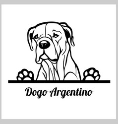 dog head dogo argentino breed black and white vector image