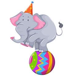 Happy elephant balancing on ball vector image