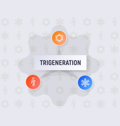 Infographics of the trigeneration concept vector