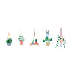 Macrame hangers for plants in pots set flat vector