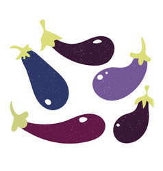 set fillet eggplant in flat style and isolated vector image