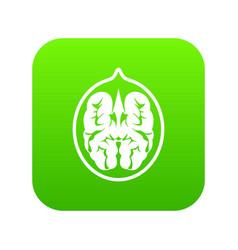 walnut icon digital green vector image