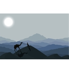 Caravan with camels at night vector image