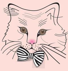 cat02 vector image