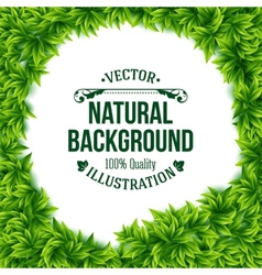 Natural frame of fresh green spring leaves vector image vector image