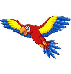cartoon funny macaw flying vector image